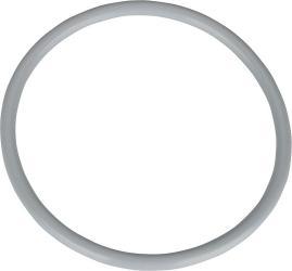 Buderus O-Ring 160 x 10 mm